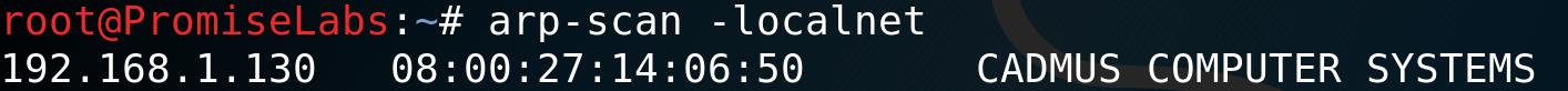 # arp-scan -localnet
