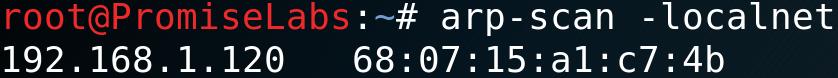 arp-scan -localnet