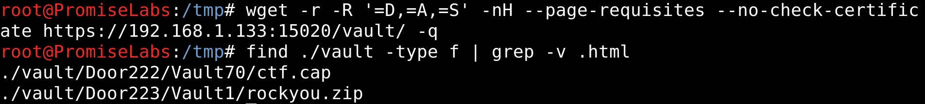wget -r -R '=D,=A,=S' -nH --page-requisites --no-check-certificate https://192.168.1.133:15020/vault/ -q; find ./vault -type f | grep -v .html