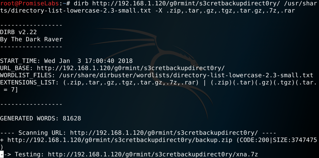 dirbuster - discovering a secret backup on target g0rmint