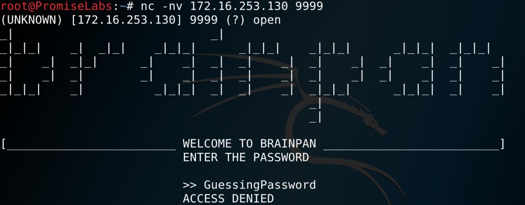 Port 999 password prompt - Brainpan 1 - vulnhub - CTF - walkthrough - d7x - PromiseLabs - blog